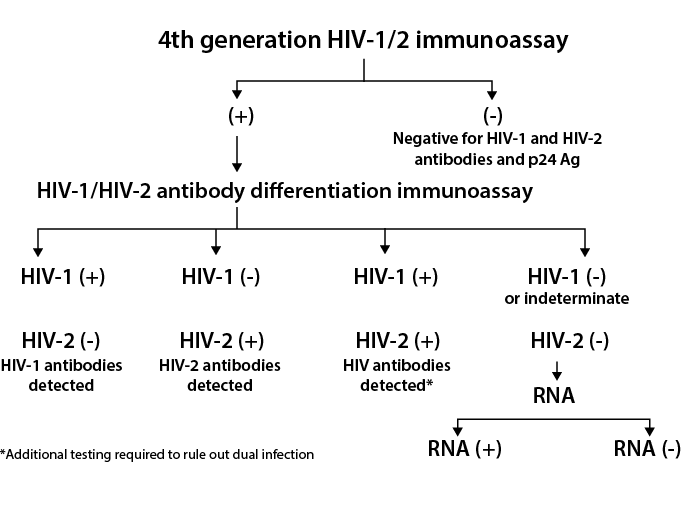 4th-Generation HIV Testing Algorithm