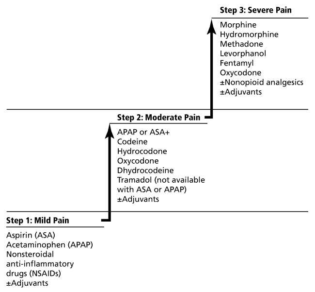 3 step pain ladder showing treatments for ascending levels of pain